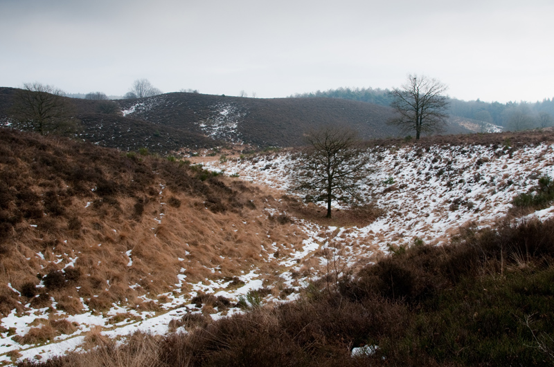 De Posbank Rhenen - Winter sneeuw