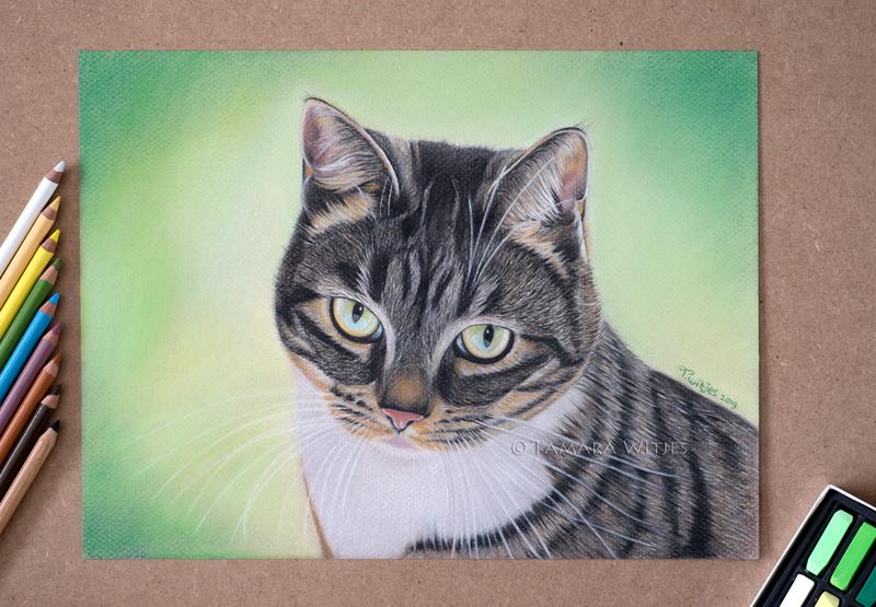 pastelportret kat